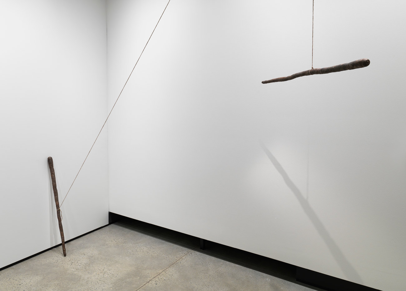 sam-porritt-carrot-shaped-stick-2013